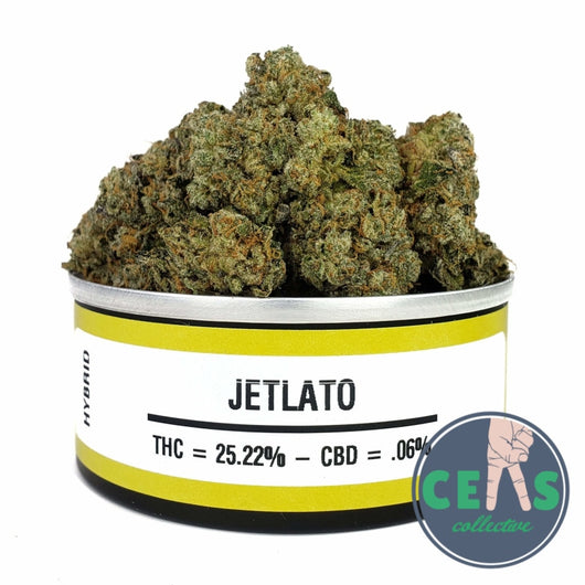 Jelato - Space Monkey Meds