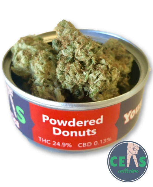 Powdered Donuts - Ceas Exotics