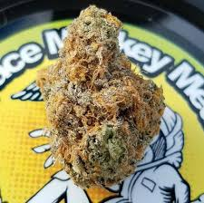 Ice Cream Man - Space Monkey Meds