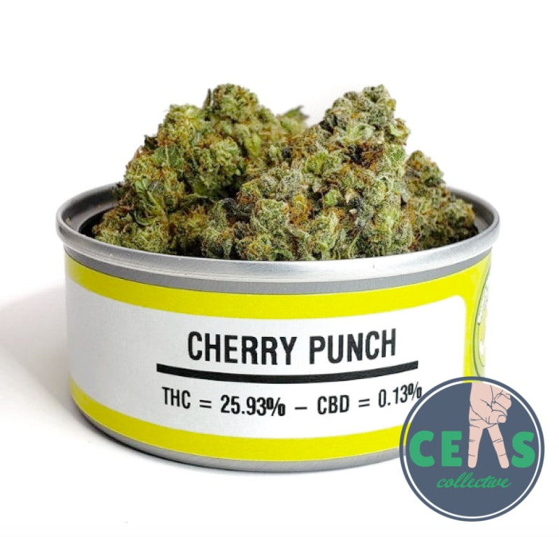 Cherry Punch - Space Monkey Meds