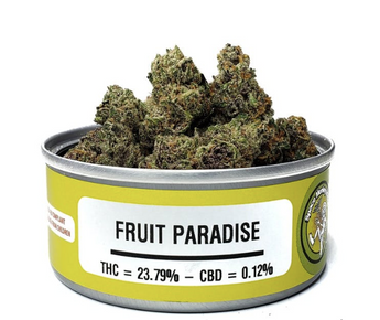 Fruit Paradise - Space Monkey Meds