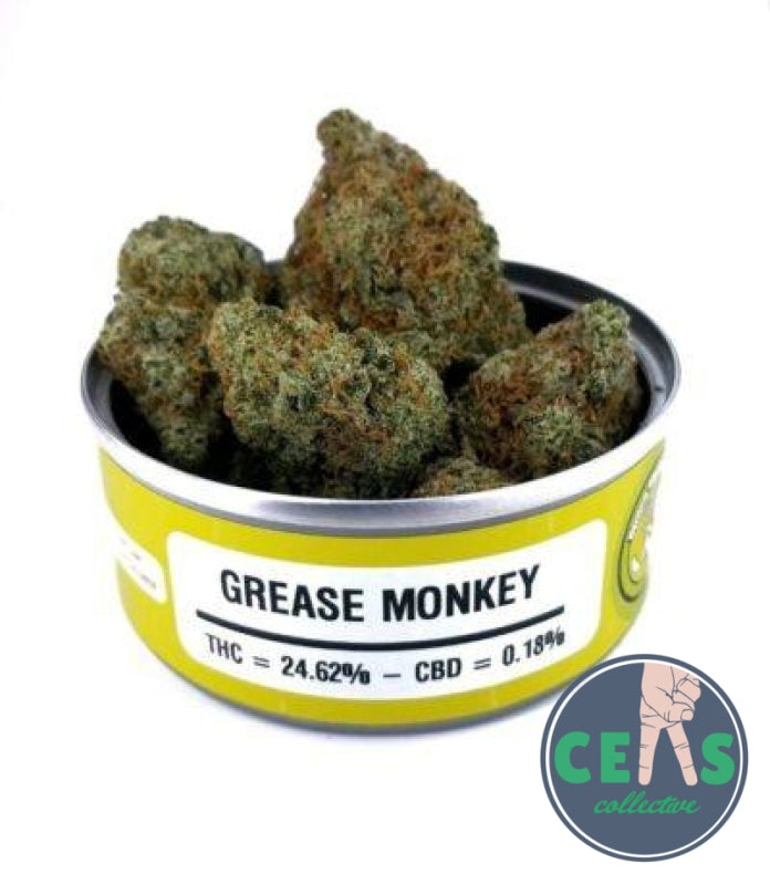 Grease Monkey - Space Meds
