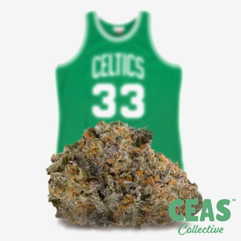 *Exotic BOGO* Larry Bird Breath