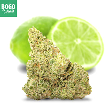 *BOGO* Key Lime Cookies
