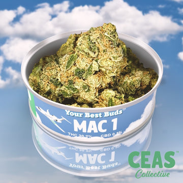 MAC 1 - CEAS Exotics