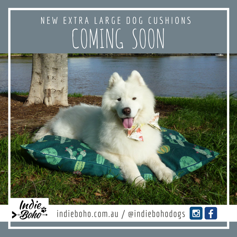 New Extra Large size dog cushion coming soon!