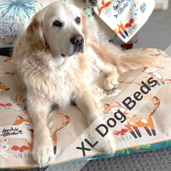 Extra large dog beds with removable cover