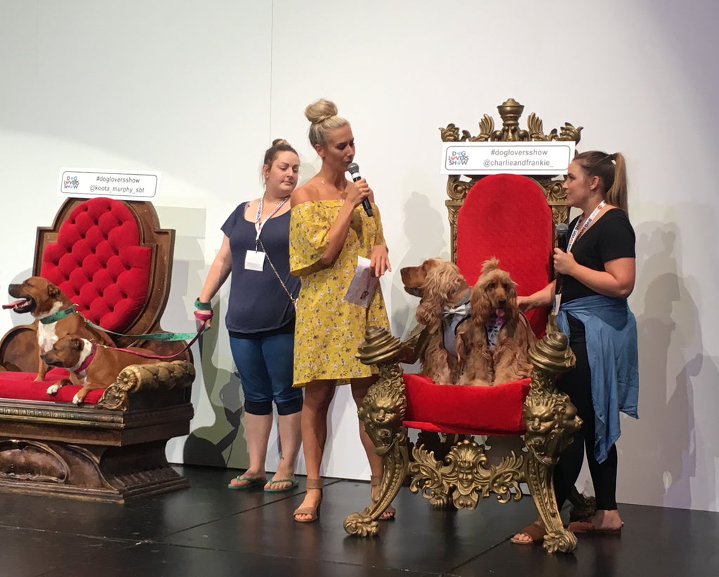 Instapooch Dog Lovers Show Brisbane