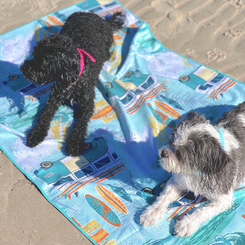 How to take dog to off leash beach safely