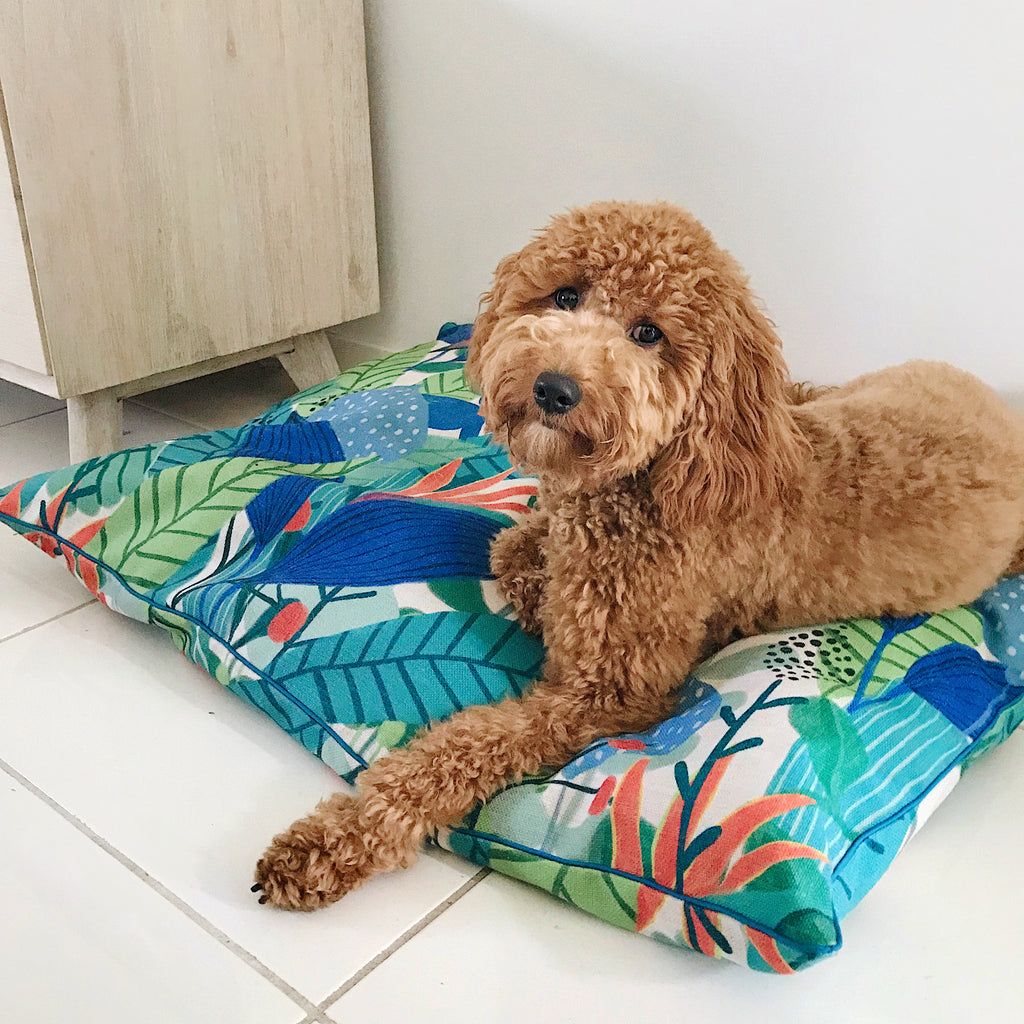 Indie ECO Pet Bed - Jungle Song
