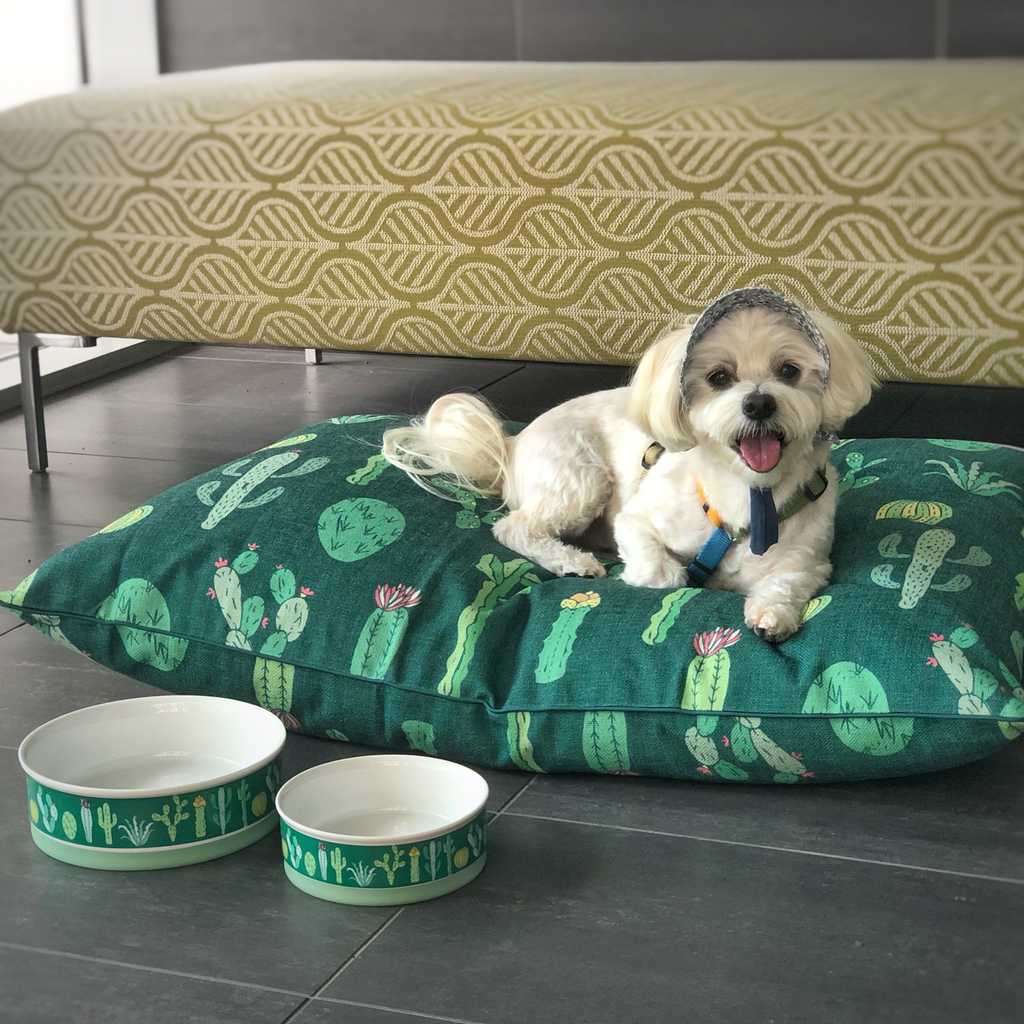 Cactus Garden Designer Dog Bowls - Medium