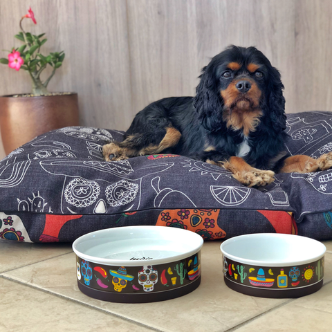 Mexican Skull Designer Dog Bowl Set
