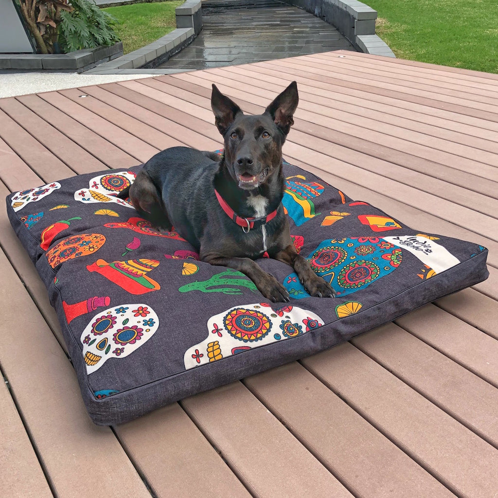Unusual design dog bed