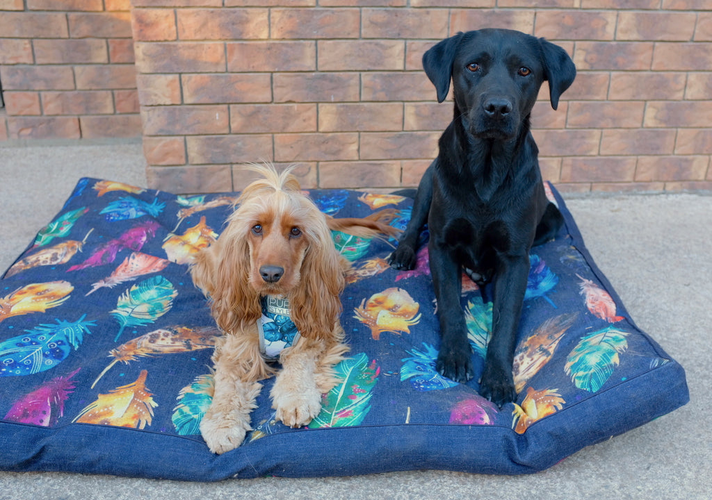 Feather Scatter Indigo – JUMBO Dog Bed