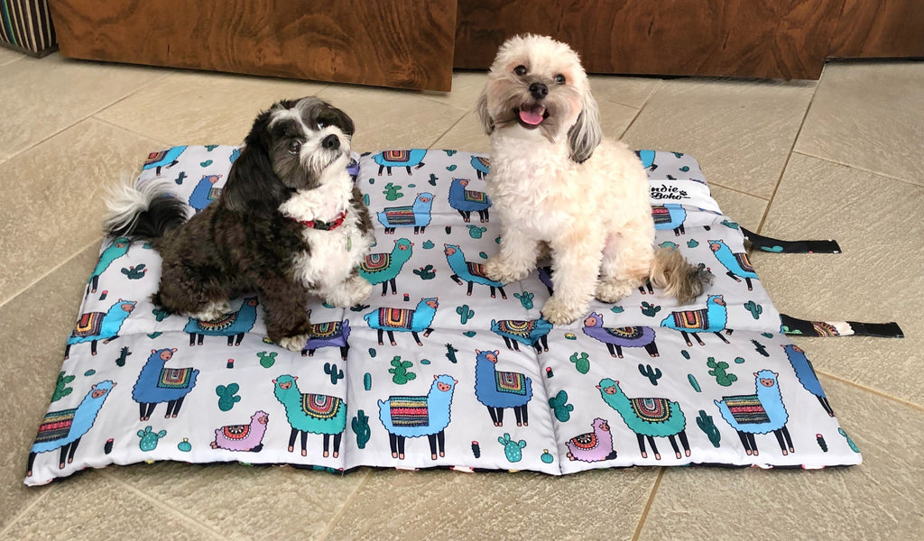 Pet Travel bed