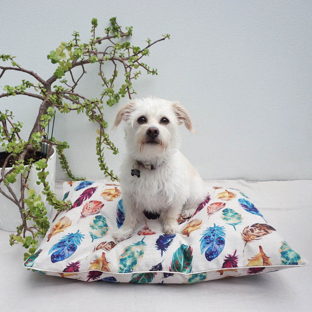 Feather Scatter Natural – LARGE Dog Bed