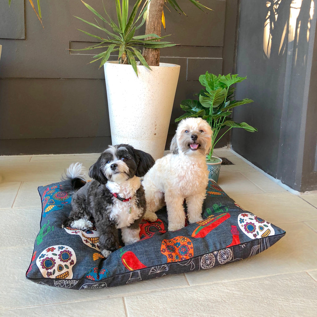 Puppies love this designer bed