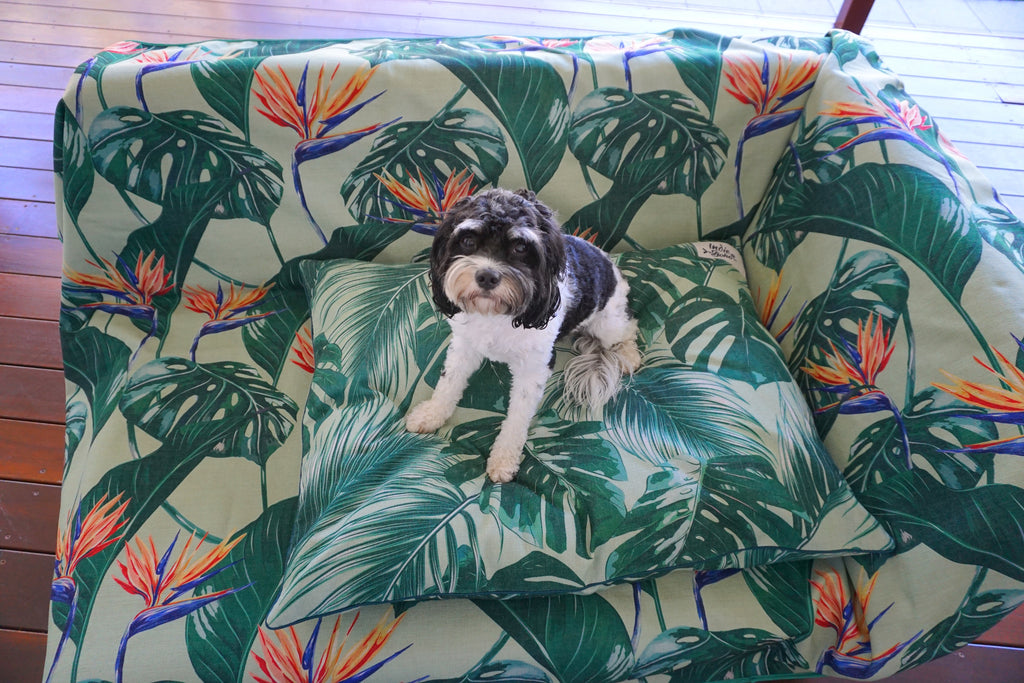 Tropical Bloom - Couch Throw