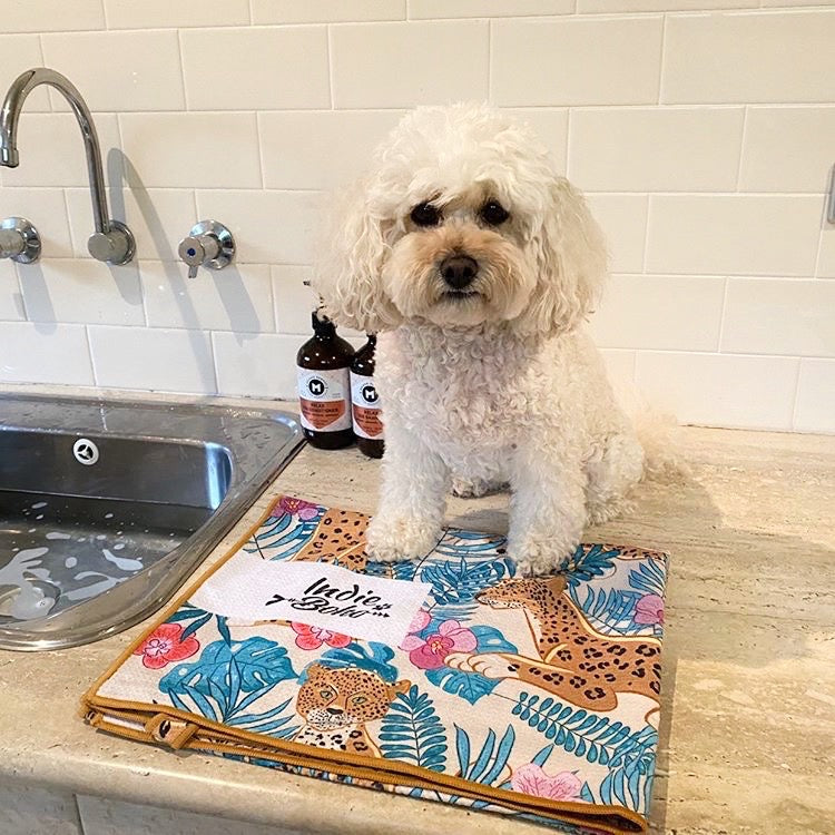 Dog Bath Towel leopard Luxe