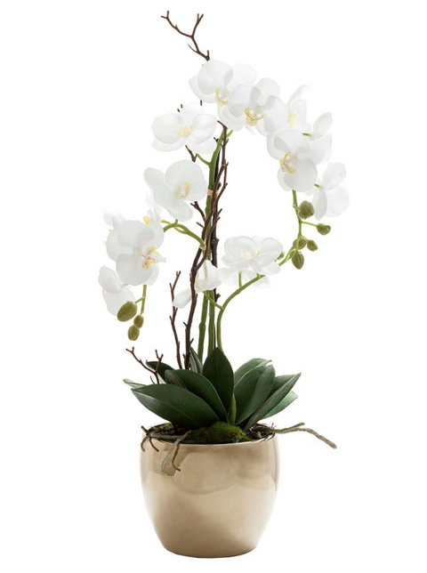 Orchid Ceramic Gold Pot 65cm