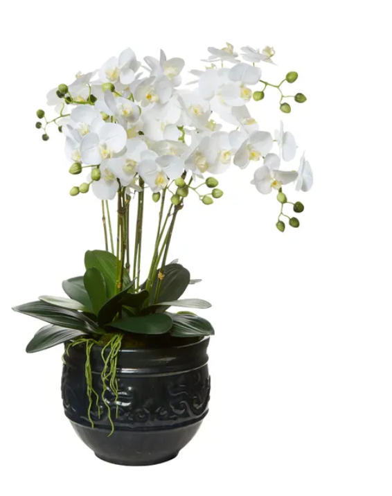 White Orchid Black Medium Planter 80cm