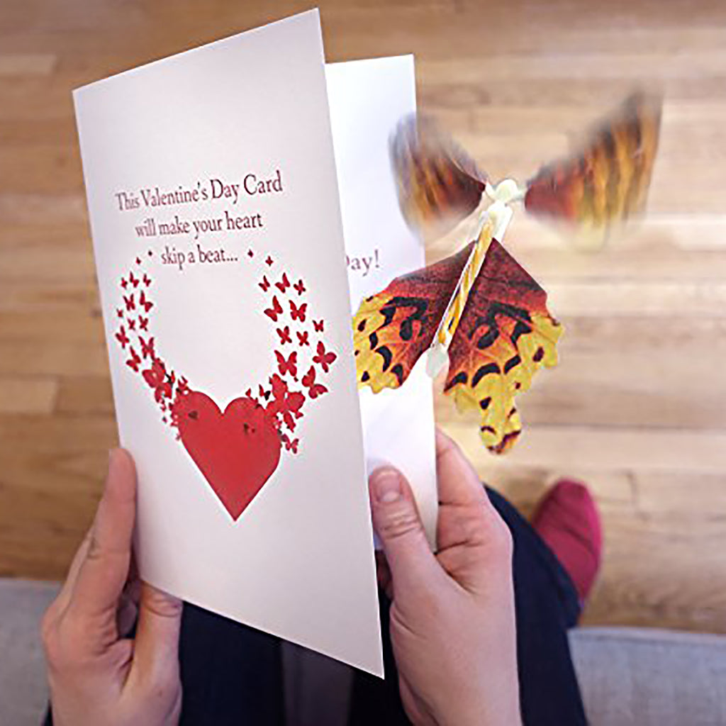 Flying Butterfly Valentine's Day Card