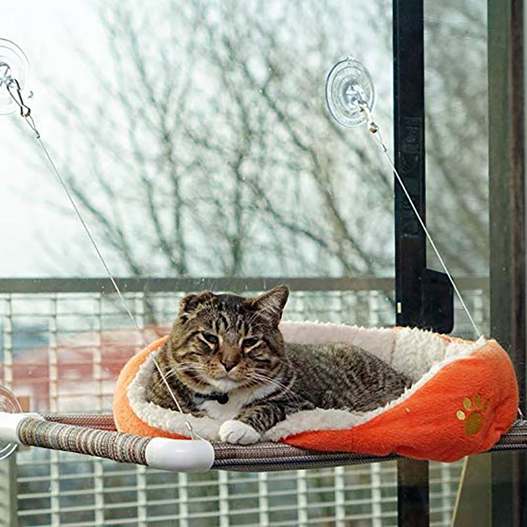 Window Kitty Cot