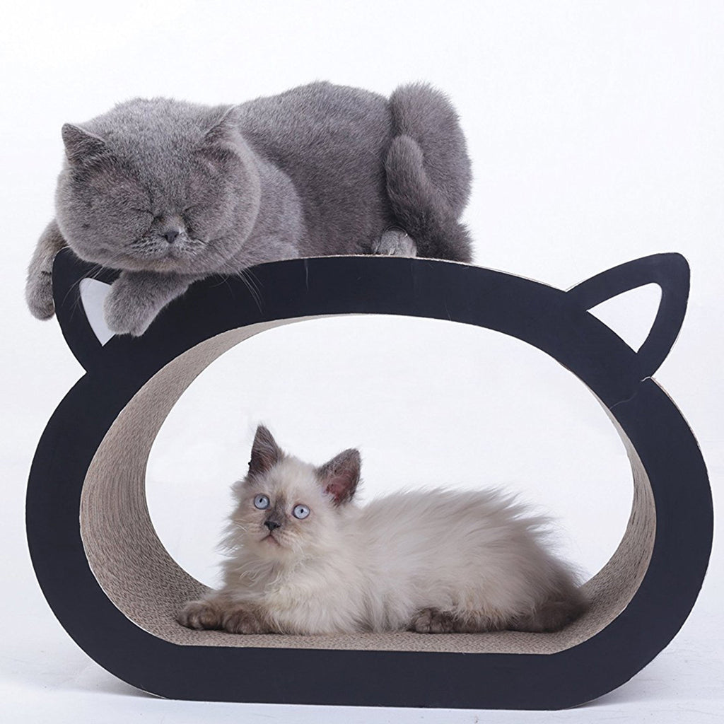 Modern Cat Bed Awesomethings Com