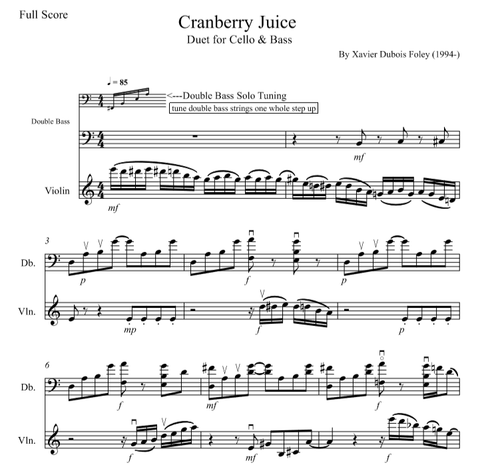 Cranberry Juice for Violin and Bass
