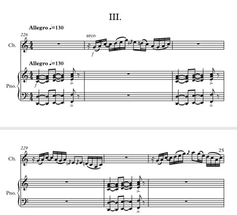 """Always on the move"" Sonata for double bass & piano (all 3 movements)"