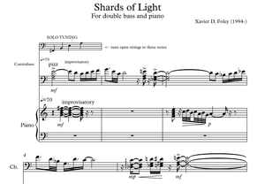Shards of Light for double bass and piano.