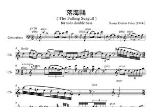 落海鷗 (The Falling Seagull)