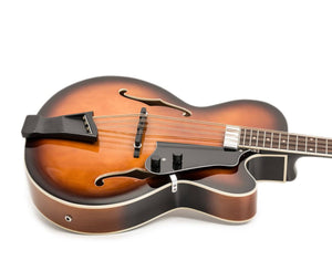Gold Tone Mandocello Acoustic-Electric with Case in Tobacco Burst Mandocello Gold Tone