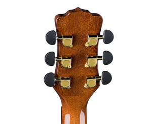 Luna Vista Bear Tropical Wood Acoustic-Electric Guitar w/ Case