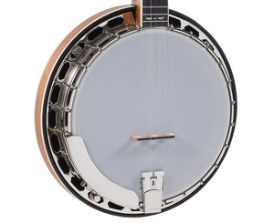 Recording King R35-BR The Madison Resonator Banjo Banjo Recording king