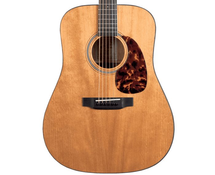 Recording King RD-T16 Torrefied Adirondack Spruce Top, Dreadnought