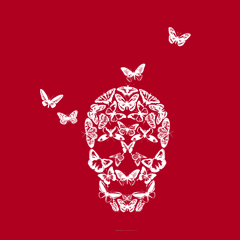 Butterfly Skull by Melody Gardy