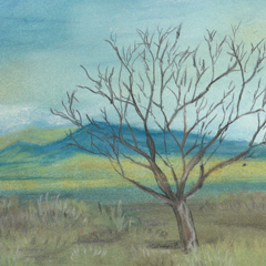 New Mexico Tree ALL OVER PRINT by Melody Gardy