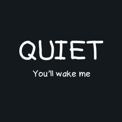 Quiet You'll Wake Me by Melody Gardy + House Of HaHa