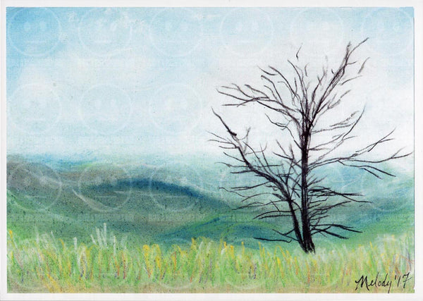 Shenandoah National Park Blue Rigde Arkway Skyline Drive  Virginia Fence Art Print