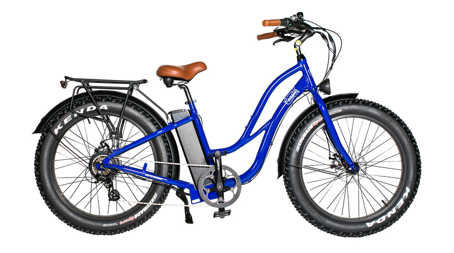 REV COASTER E-BIKE