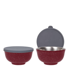 24oz Insulated Food Bowl with Silicone Lid - 2 Pack Bundle