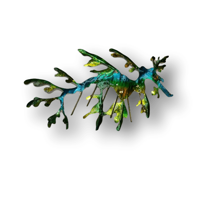 Copper Art Brooch ~ Leafy Sea Dragon - Aspect Design Tasmanian Gifts Gallery
