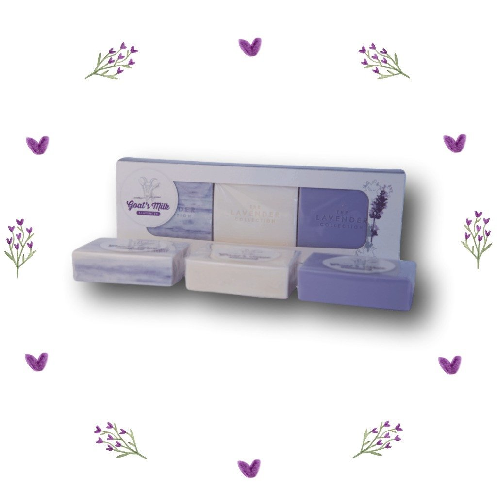 Tasmanian Lavender & Goat's Milk Soap Triple Gift Pack - Aspect Design Tasmanian Gifts Gallery