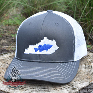 Kentucky Catfish Blue on Charcoal/White