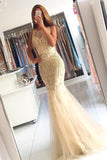 Mermaid Brush Train Sleeveless Layers Tulle Beading Prom Dress,Party Dress