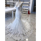 Luxury V Neck Lace Tulle Mermaid Wedding Dresses with Appliques W511