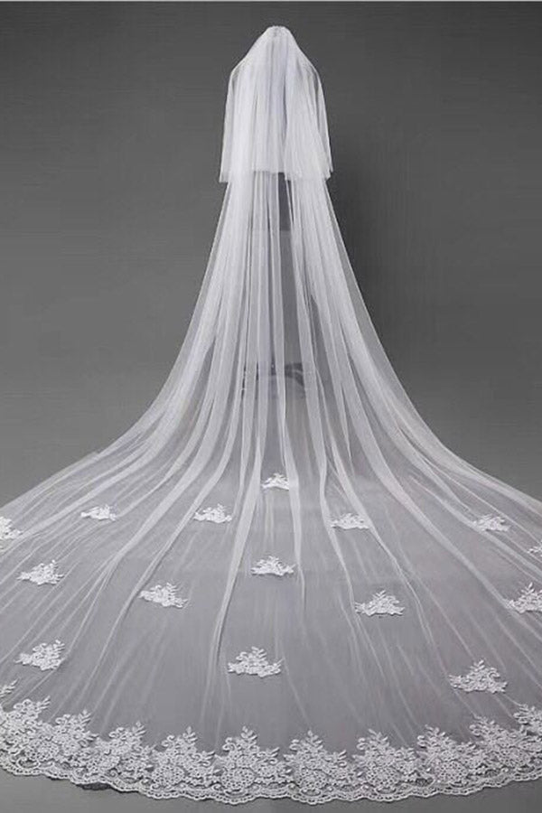 Cute Tulle Lace Appliques Chapel Veils Long Wedding Veil V20