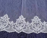 Charming Long Tulle Lace With Appliques Chapel Veils Wedding Veil V21 - Ombreprom