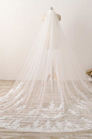 Chic 3M Long Tulle Lace With Applique Wedding Bridal Veil V12
